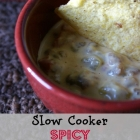 Slow Cooker Spicy Sausage Dip