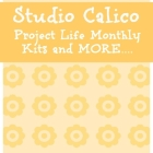 Studio Calico has Project Life Monthly Kit