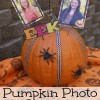 Pumpkin Photo Display