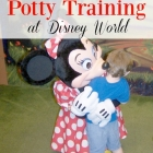 How to Succeed with Potty Training at Disney World