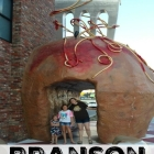 Family Road trip to Branson Must Do List