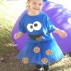 How to Make a Cookie Monster Costume