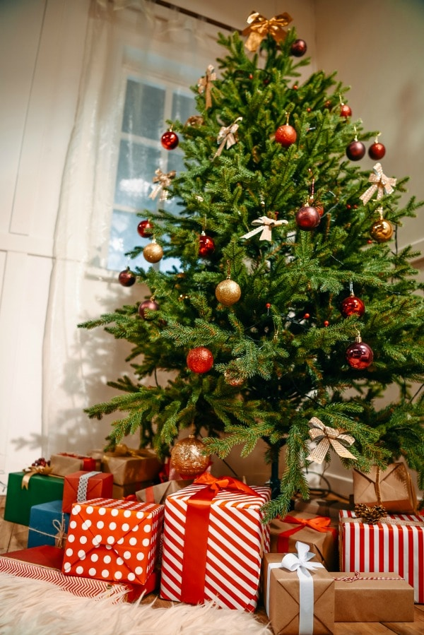 5 reasons i put up my christmas tree before thanksgiving - When Do You Put Up Your Christmas Tree