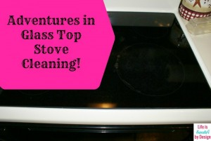 Adventures in Cleaning a Glass Top Stove