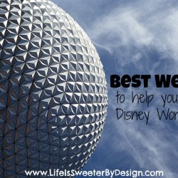 Best Websites for Planning a Trip to Disney World