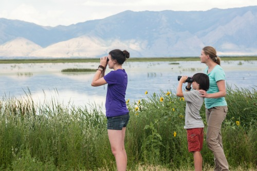where to go for bird watching