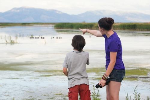 bird watching with children