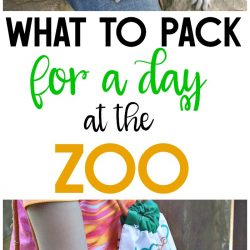 What to pack for a zoo trip so you have everything you need! A zoo outing is a great way to build family memories! #ad #TrySomeTHINGood