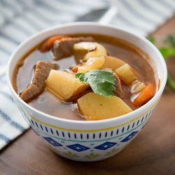 Weight Watchers Instant Pot Beef Stew