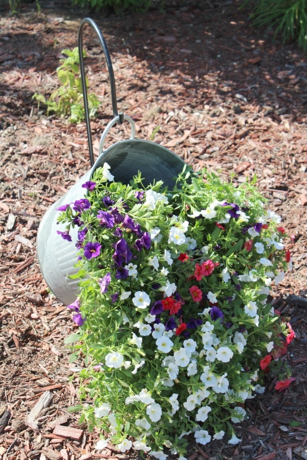 cascading flowers in metal bucket
