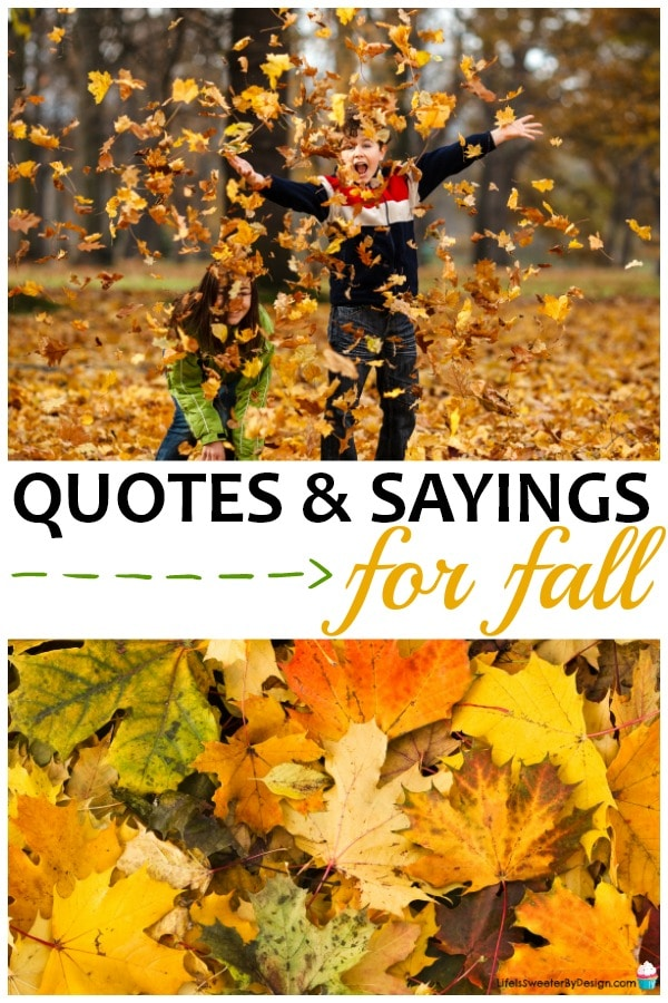 Fall Quotes And Sayings For Scrapbooking Life Is Sweeter By Design