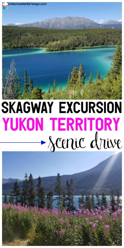 Skagway Alaska has an amazing excursion called the Yukon Territory Scenic Drive. Find out all about this Skagway excursion and how awesome it is!