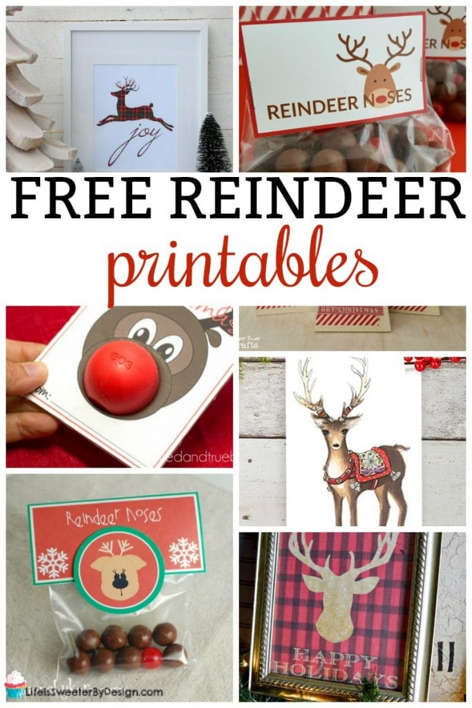 photo regarding Pin the Nose on the Reindeer Printable named Totally free Reindeer Printables for Xmas - Existence is Sweeter As a result of