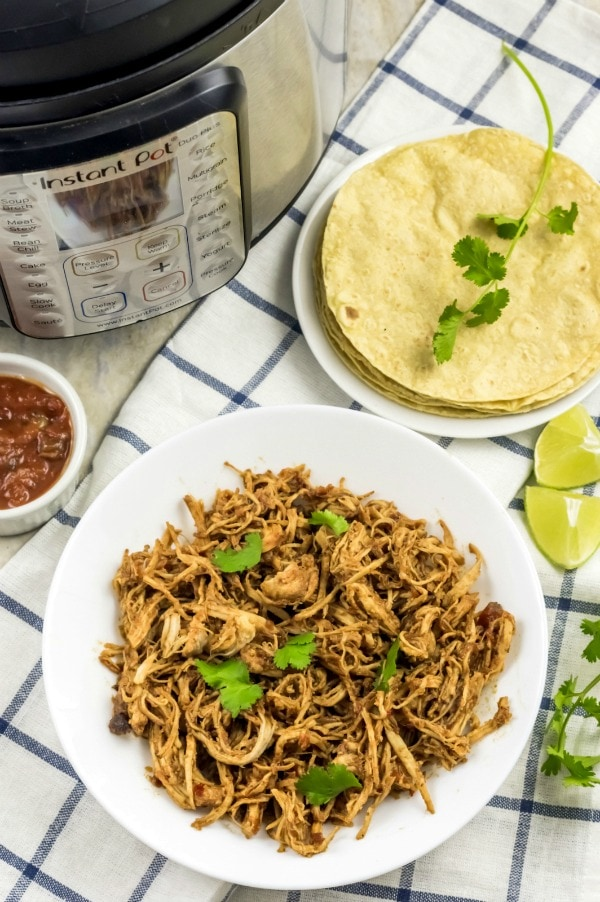 Weight Watchers Salsa Chicken in the Instant Pot
