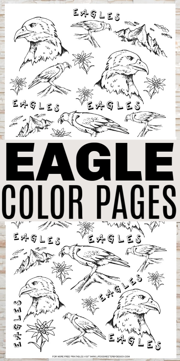 Eagle Color Pages