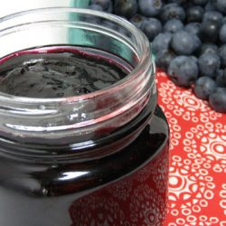 2 ingredient blueberry jam