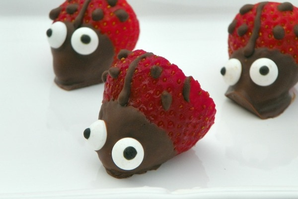 easy Lady Bug Strawberries