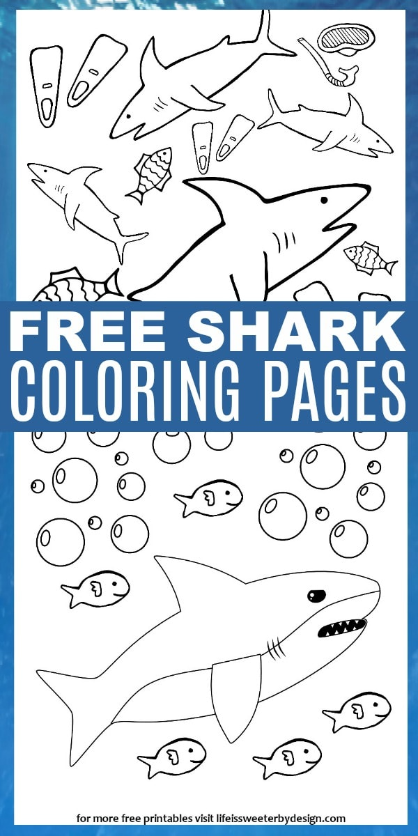 shark color pages