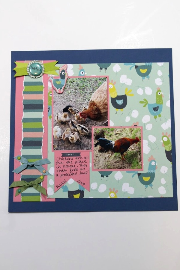 chicken scrapbook layout