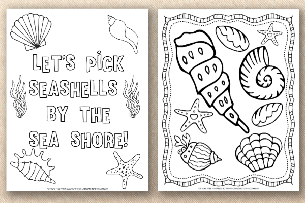seashell color pages