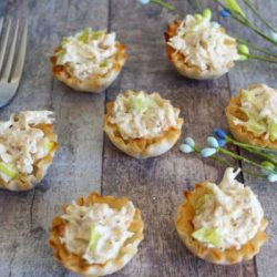Weight Watchers Chicken Salad Bites