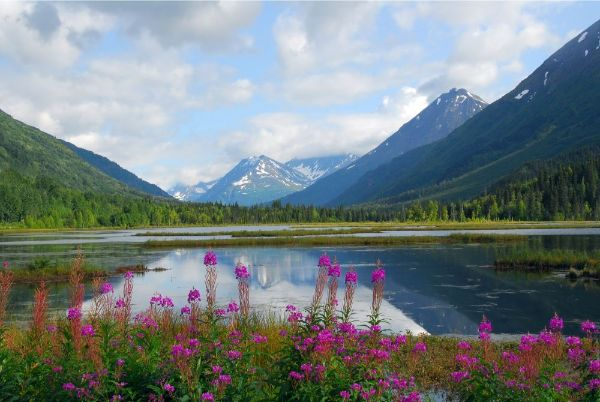 visit Alaska with kids