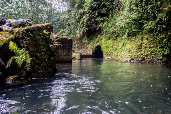 tunnel system in Kauai Mountain Tubing Adventure