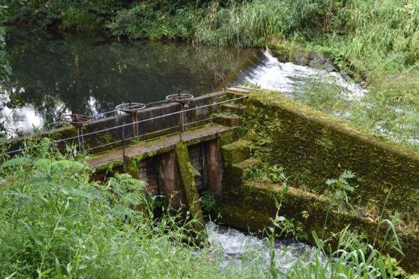 canals in Kauai Mountain Tubing Adventure
