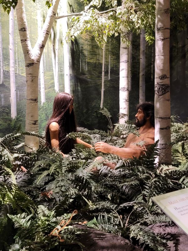 Adam and Eve exhibit at the Creation Museum