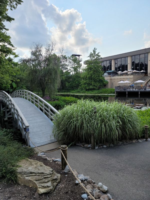 bridge in the botanical gardens at the Creation Museum